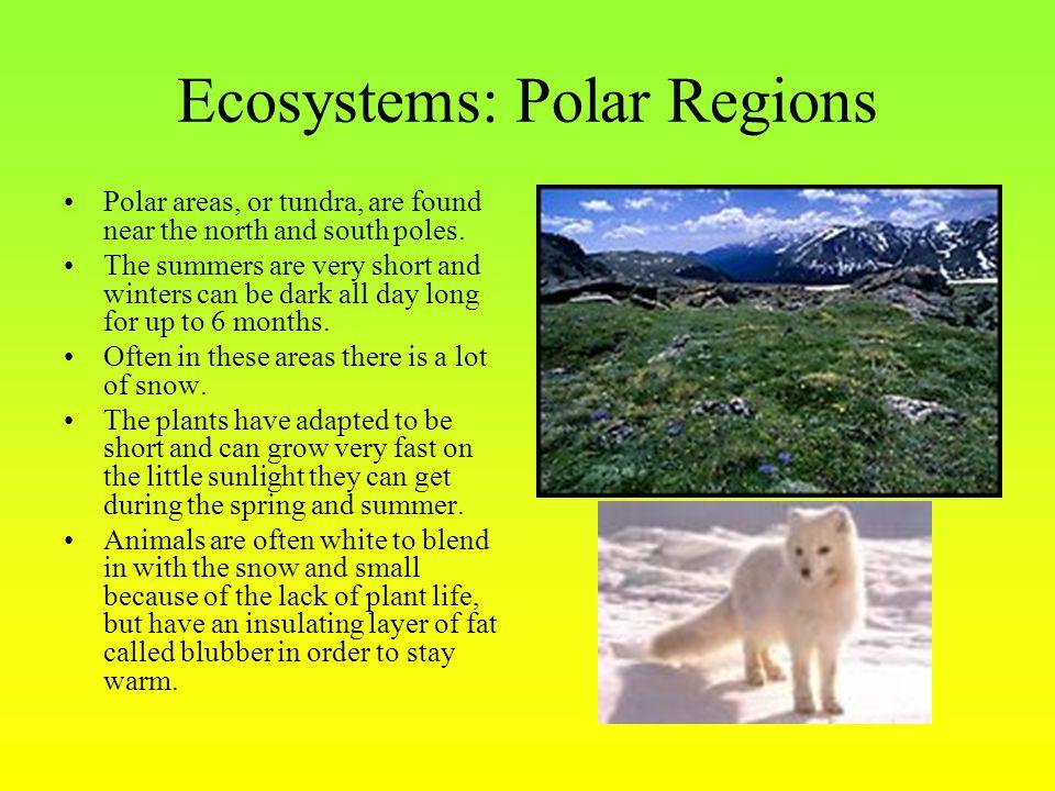Ecosystems: Polar Regions