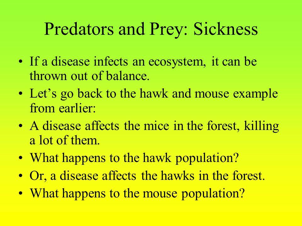 Predators and Prey: Sickness