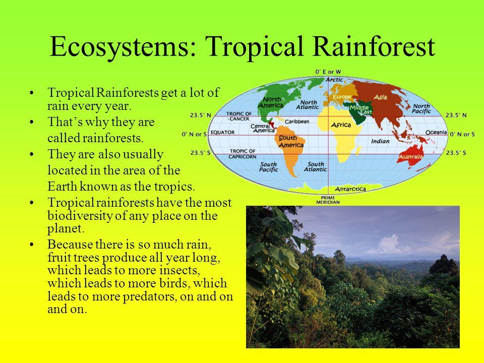 Ecosystems: Tropical Rainforest