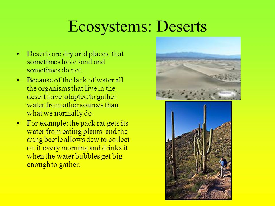 Ecosystems: Deserts Deserts are dry arid places, that sometimes have sand and sometimes do not.