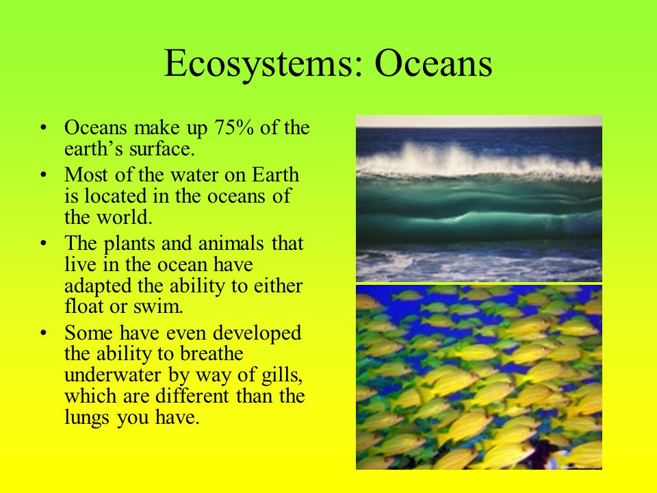 Ecosystems: Oceans Oceans make up 75% of the earth's surface.