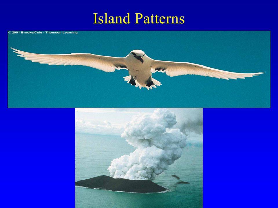Island Patterns