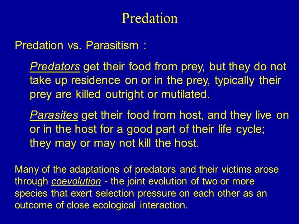 Predation Predation vs. Parasitism :
