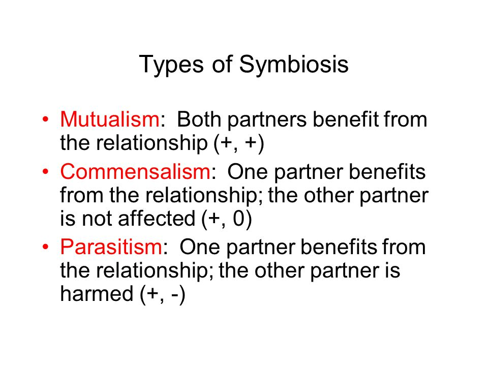 Types of Symbiosis Mutualism: Both partners benefit from the relationship (+, +)