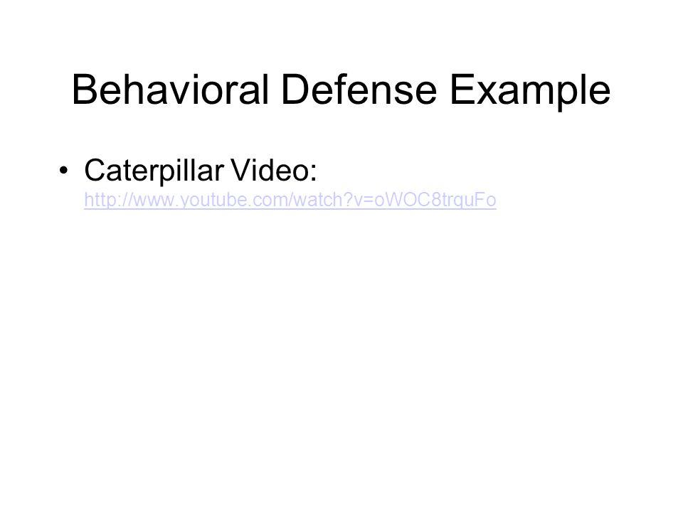 Behavioral Defense Example