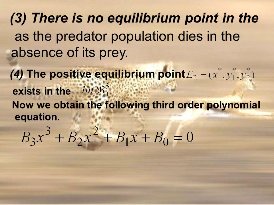 (4) The positive equilibrium point