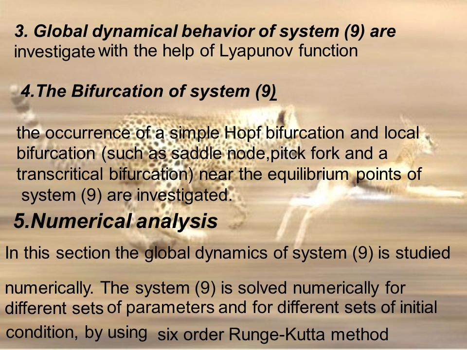 5.Numerical analysis 3. Global dynamical behavior of system (9) are