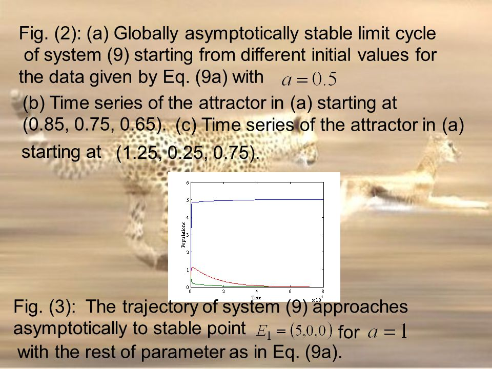 (c) Time series of the attractor in (a)