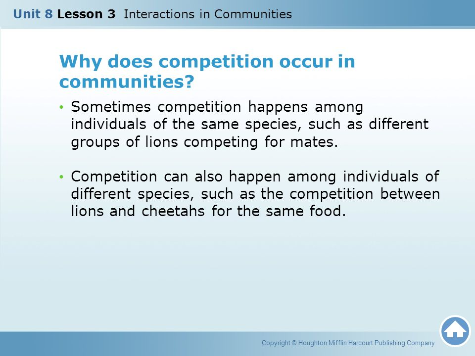 Why does competition occur in communities