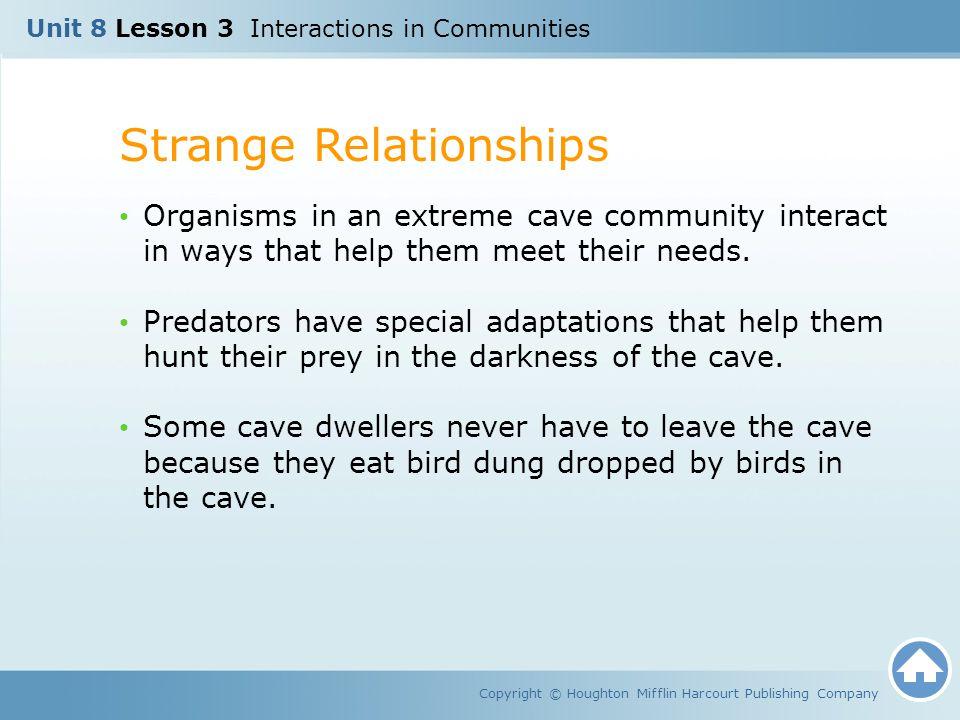 Strange Relationships