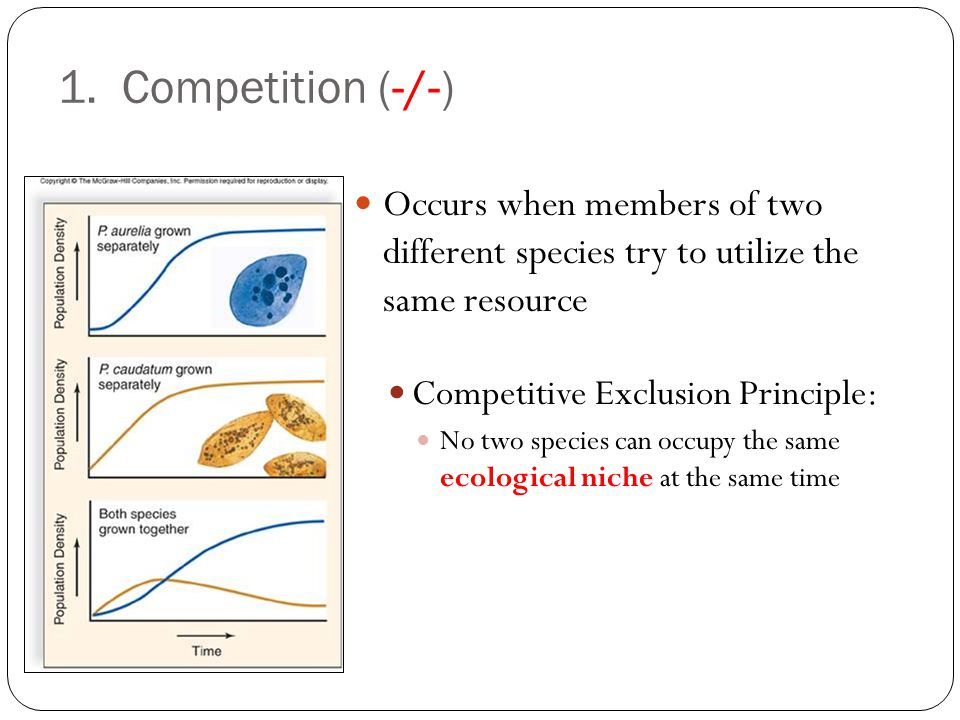 1. Competition (-/-) Occurs when members of two different species try to utilize the same resource.