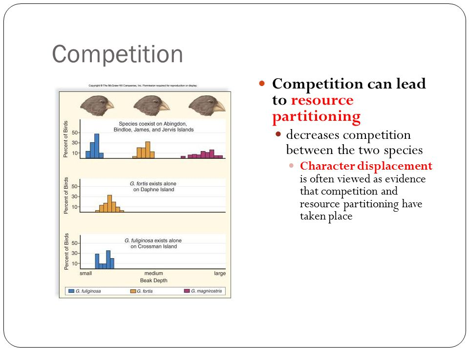 Competition Competition can lead to resource partitioning
