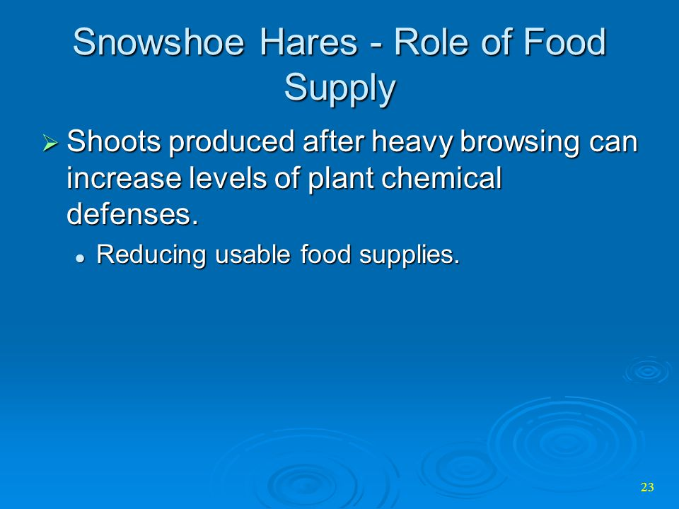 Snowshoe Hares - Role of Food Supply