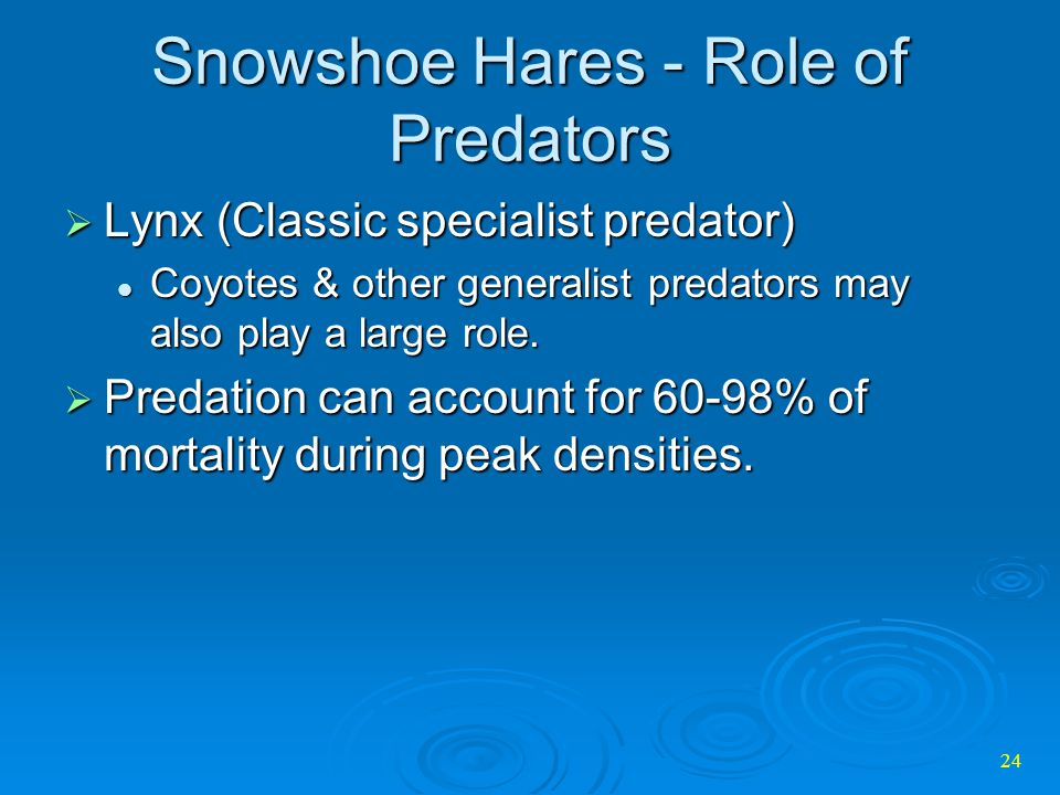 Snowshoe Hares - Role of Predators