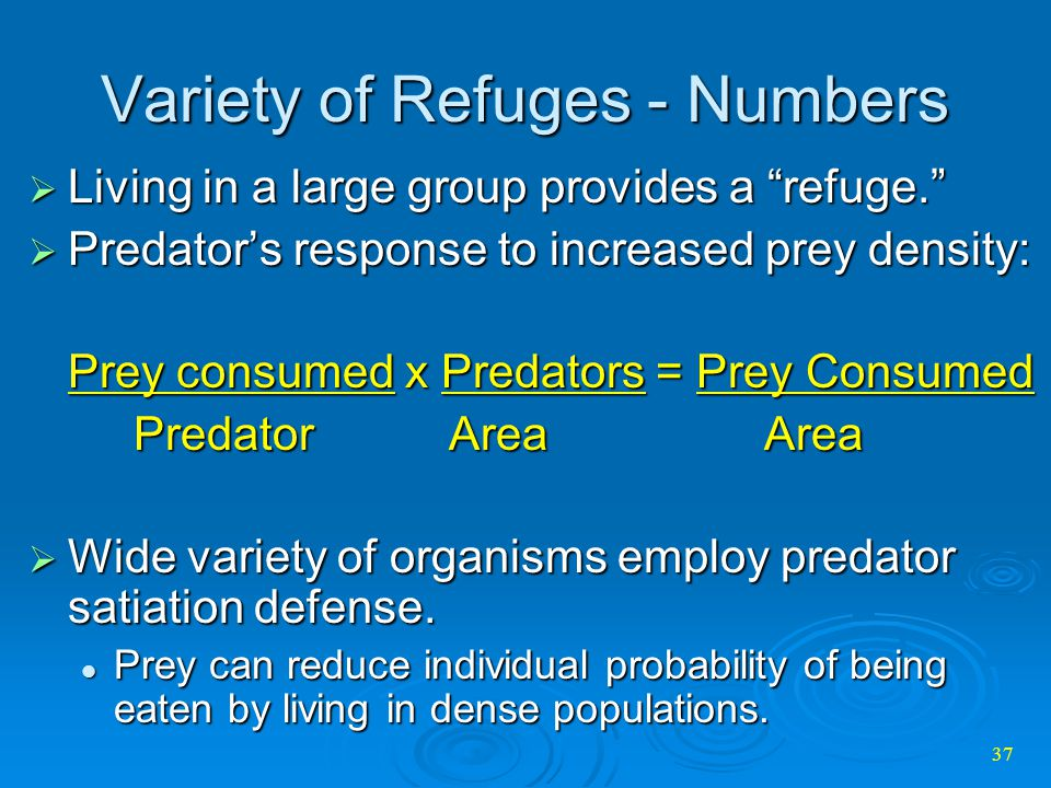 Variety of Refuges - Numbers