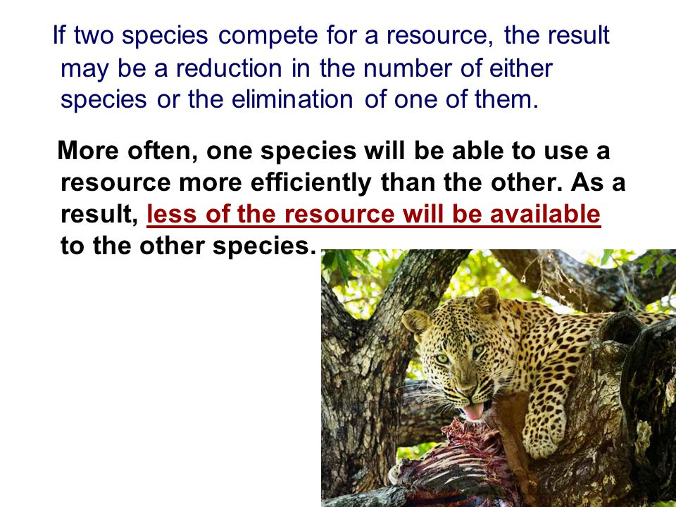 If two species compete for a resource, the result may be a reduction in the number of either species or the elimination of one of them.
