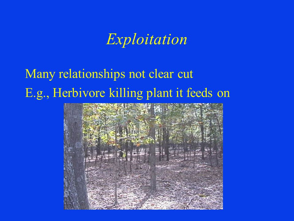 Exploitation Many relationships not clear cut