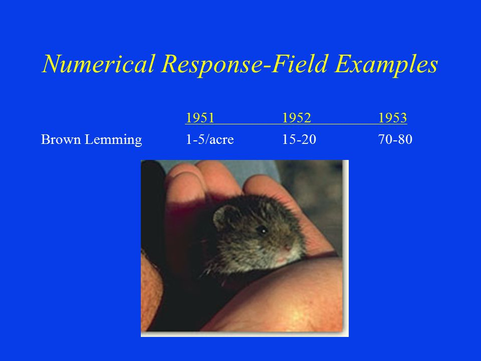 Numerical Response-Field Examples