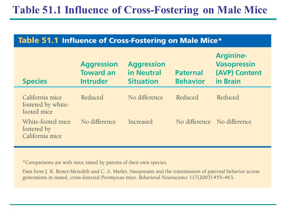 Table 51.1 Influence of Cross-Fostering on Male Mice