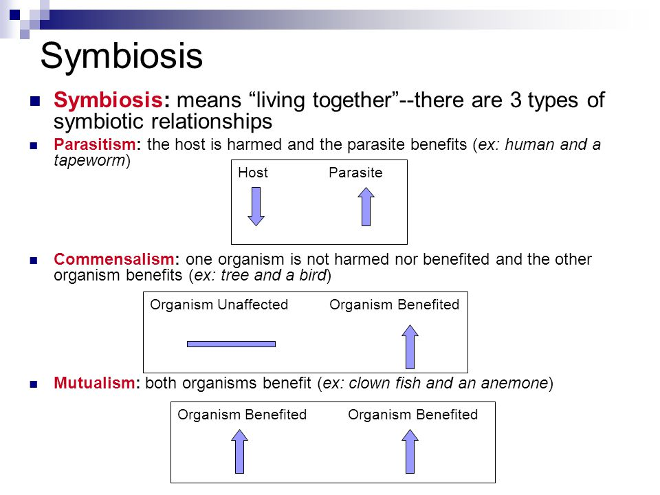 Symbiosis Symbiosis: means living together --there are 3 types of symbiotic relationships.