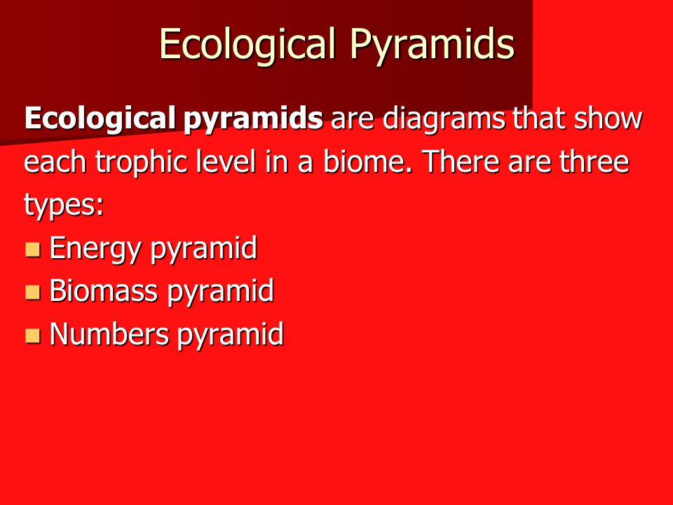 Ecological Pyramids Ecological pyramids are diagrams that show