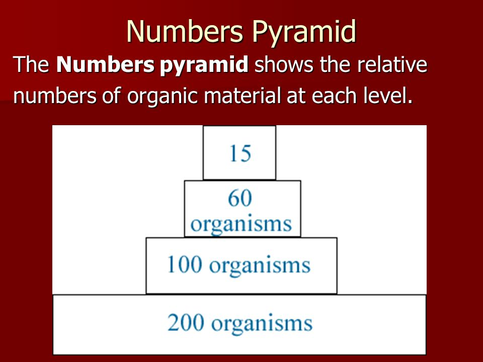 Numbers Pyramid The Numbers pyramid shows the relative