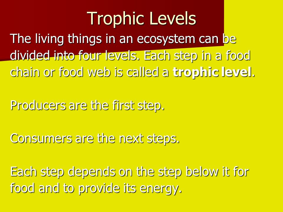 Trophic Levels The living things in an ecosystem can be