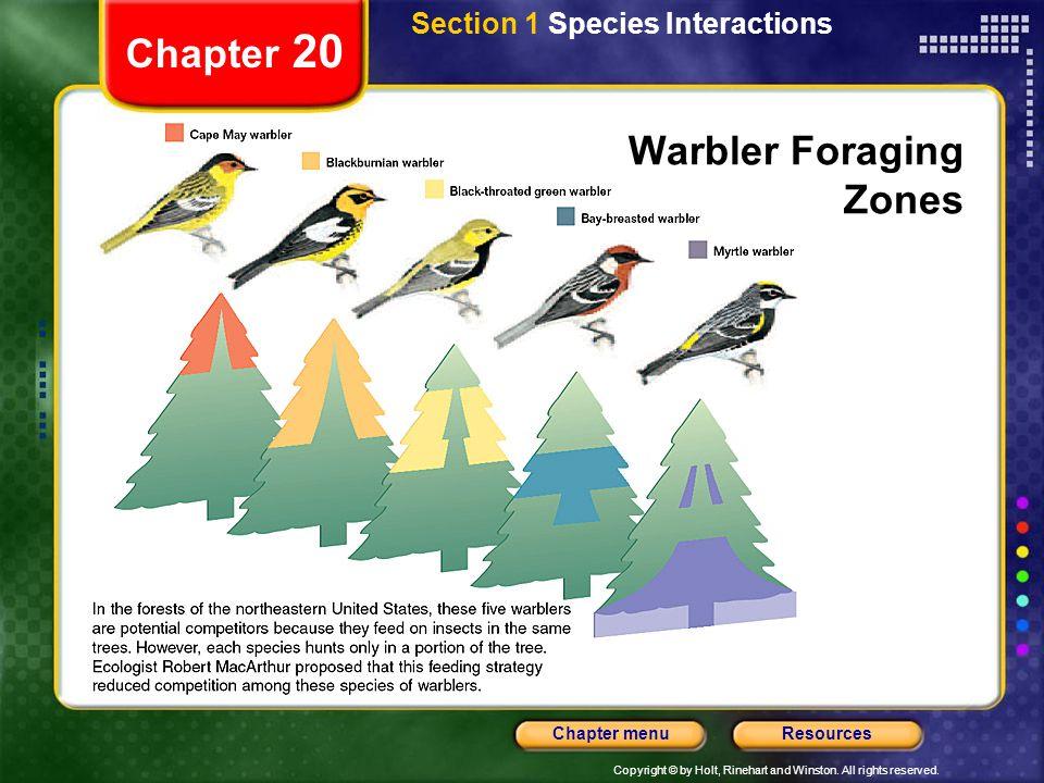 Warbler Foraging Zones