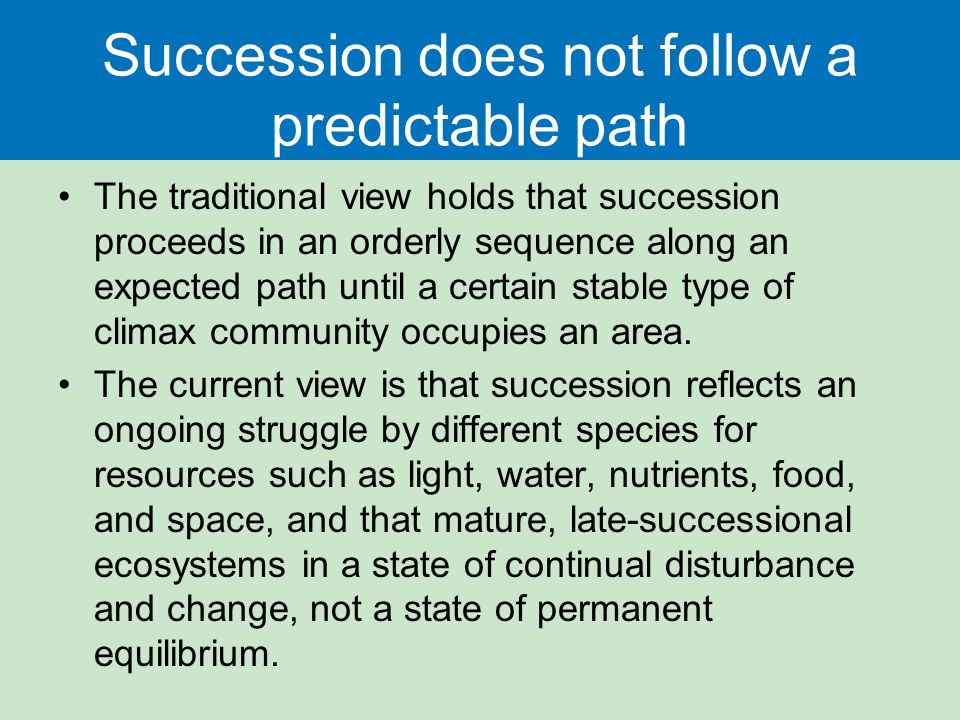 Succession does not follow a predictable path