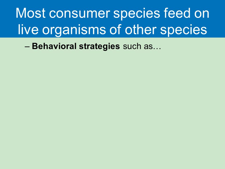 Most consumer species feed on live organisms of other species