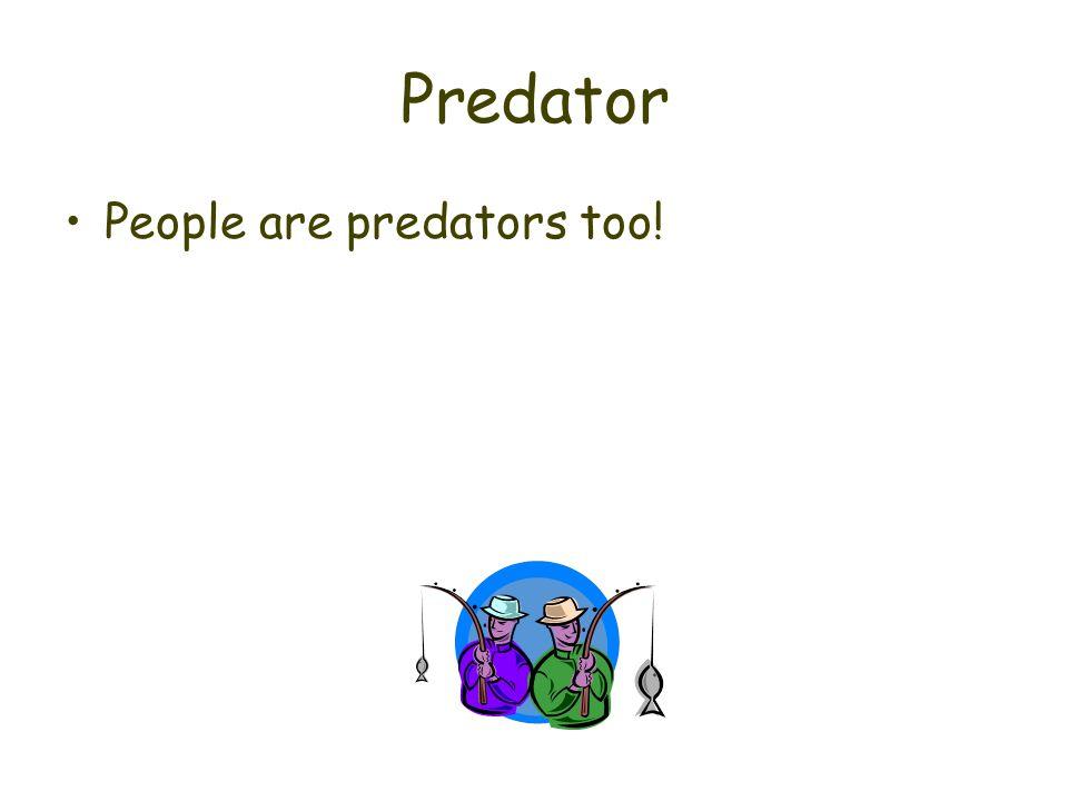 Predator People are predators too!