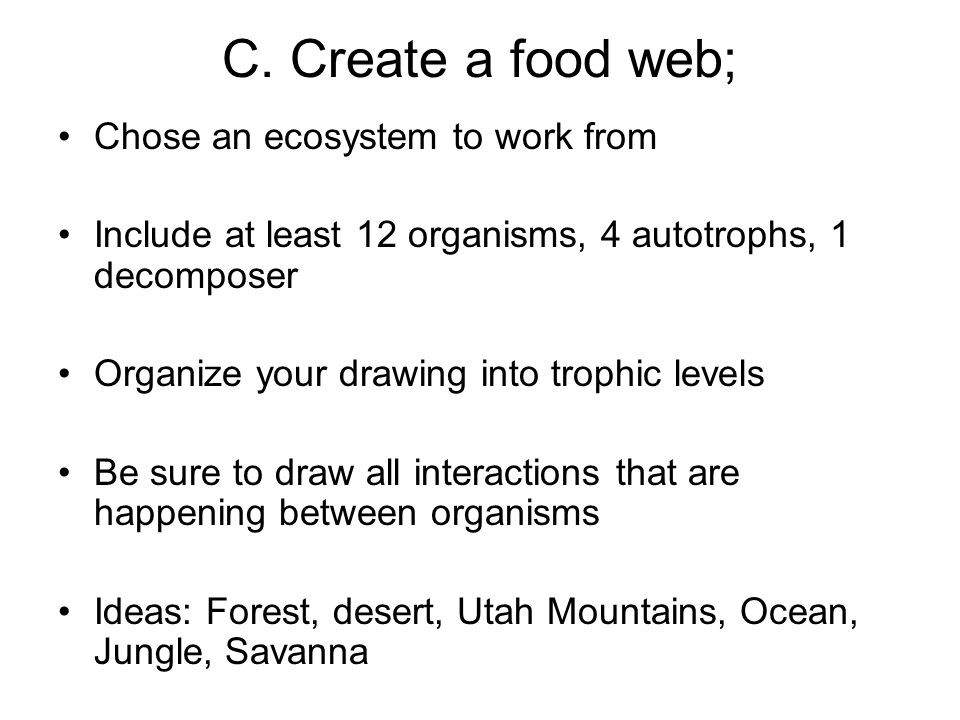 C. Create a food web; Chose an ecosystem to work from