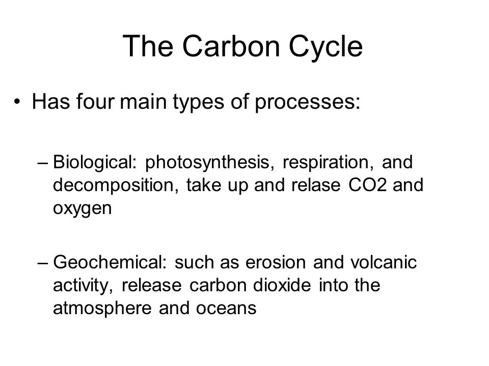 The Carbon Cycle Has four main types of processes: