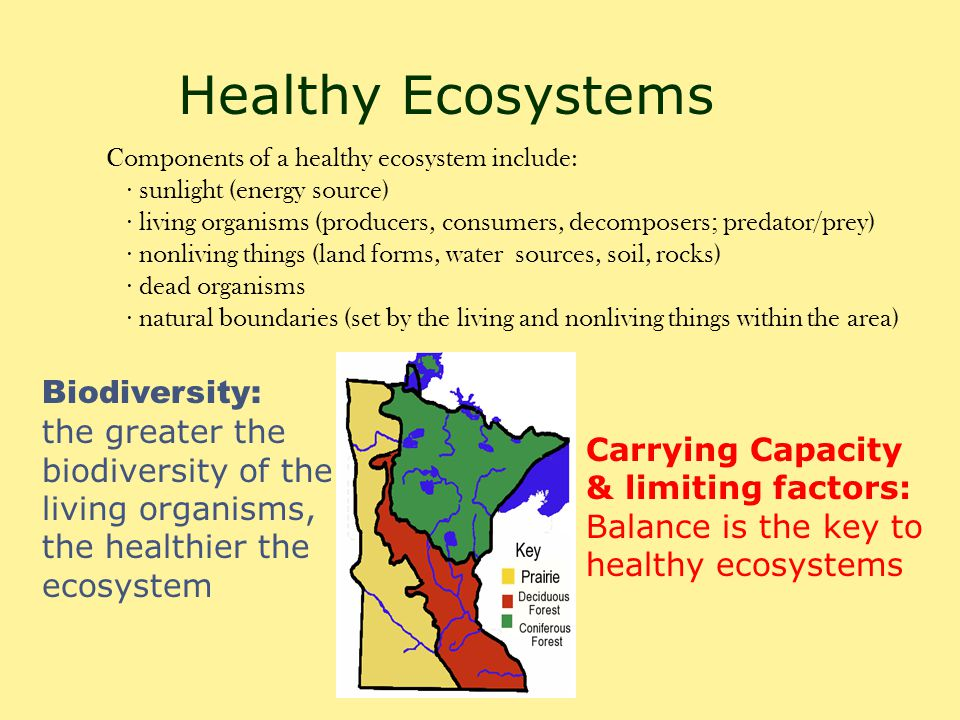 Healthy Ecosystems Biodiversity: