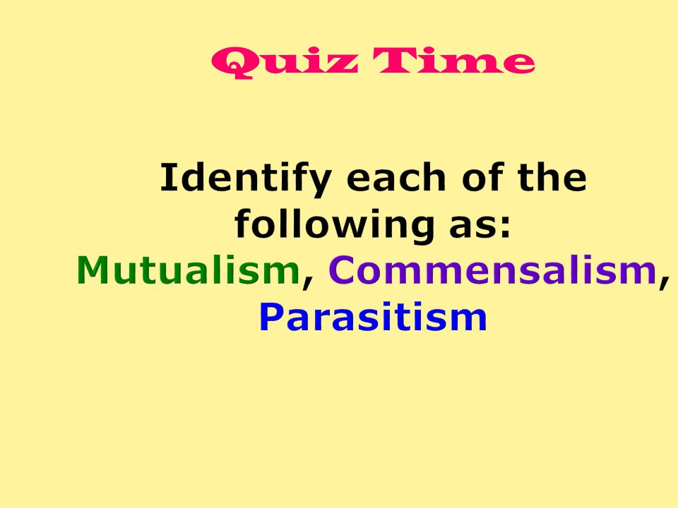 Identify each of the following as: Mutualism, Commensalism, Parasitism