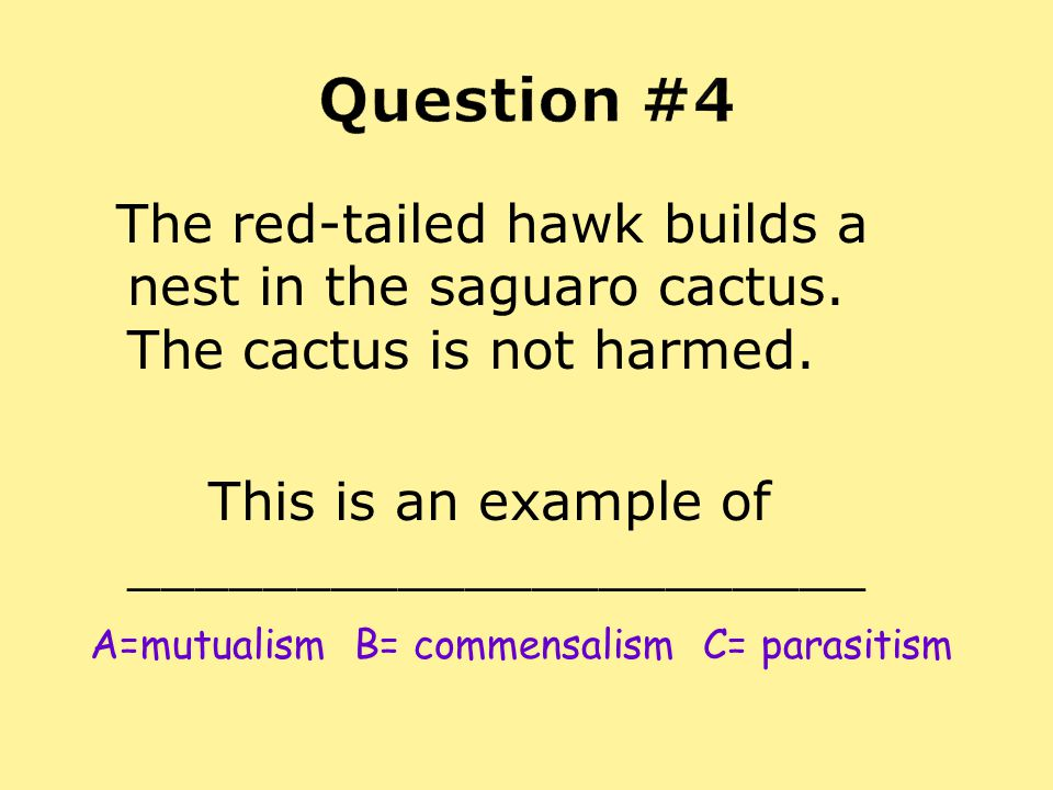 Question #4 The red-tailed hawk builds a nest in the saguaro cactus. The cactus is not harmed. This is an example of ______________________.