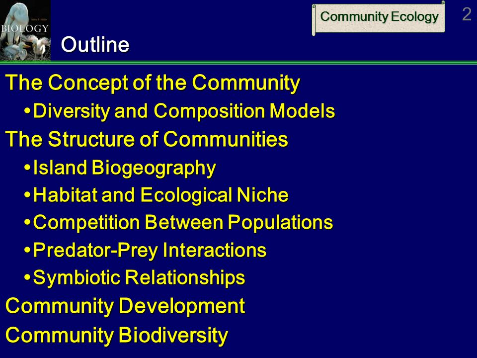 The Concept of the Community The Structure of Communities