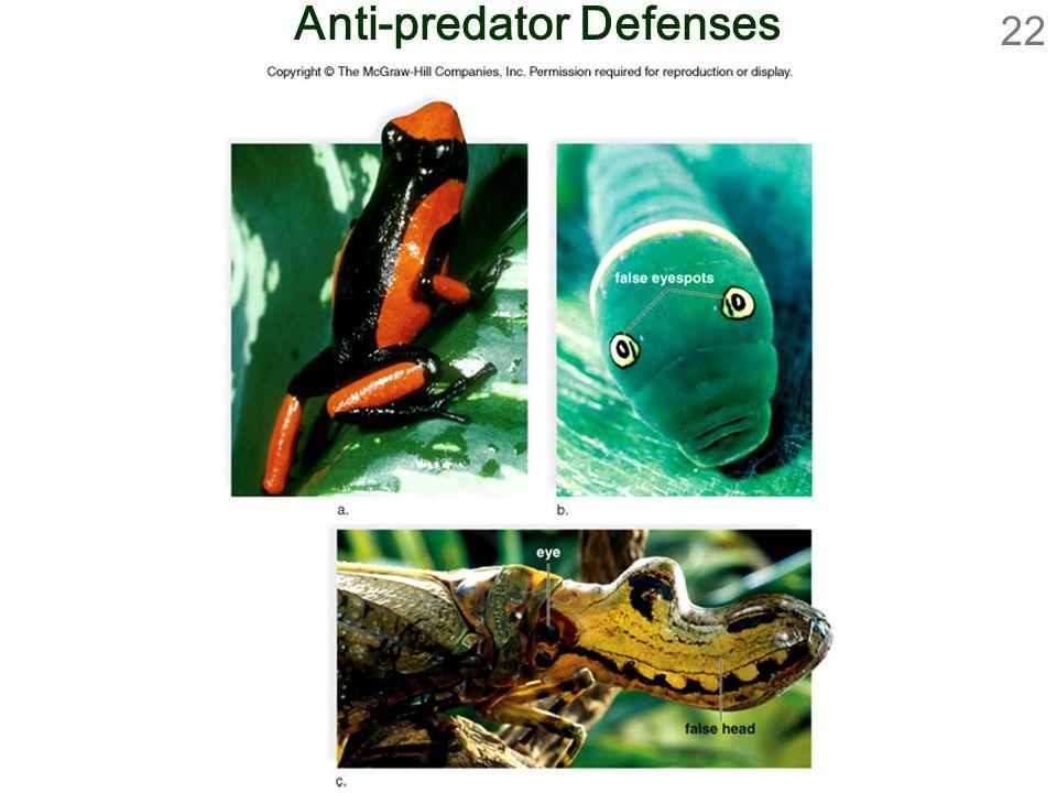 Anti-predator Defenses