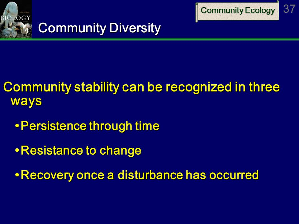 Community stability can be recognized in three ways