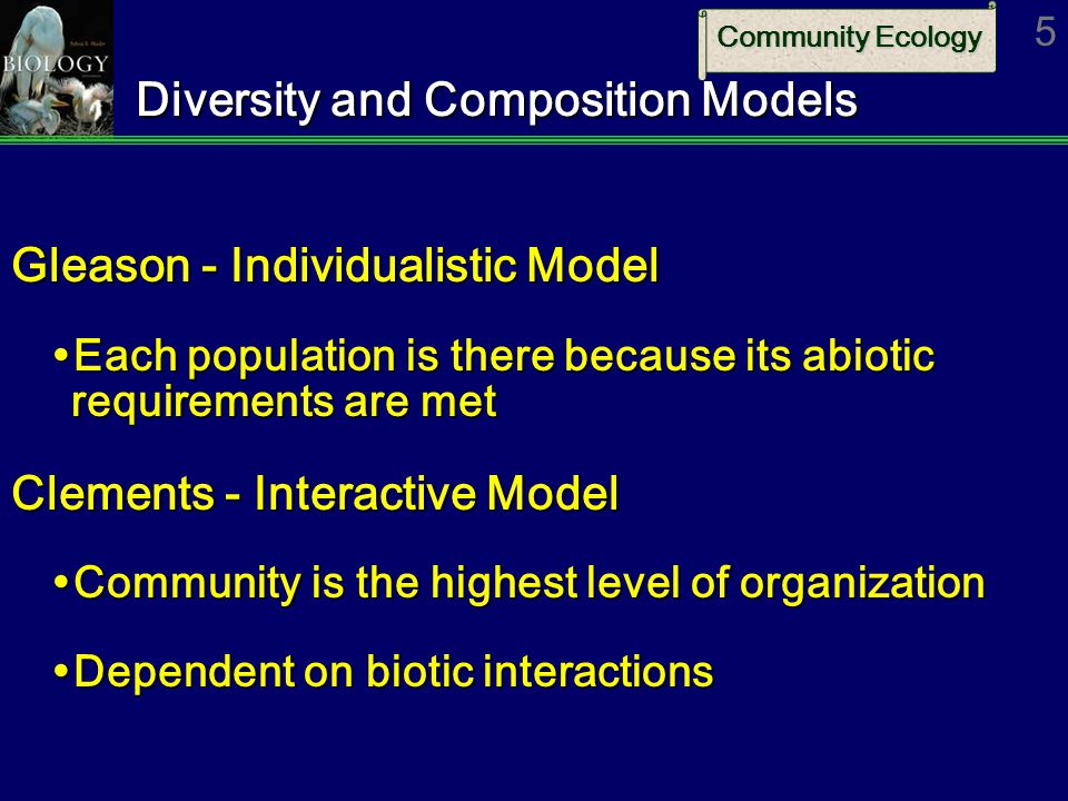 Diversity and Composition Models