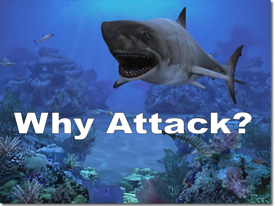 Why Attack