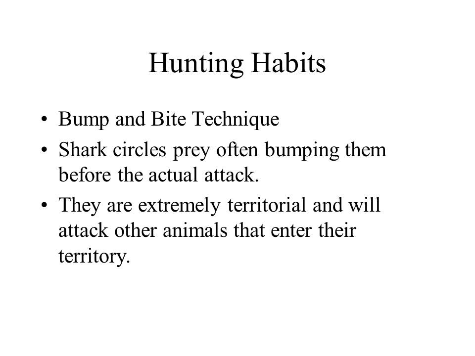 Hunting Habits Bump and Bite Technique