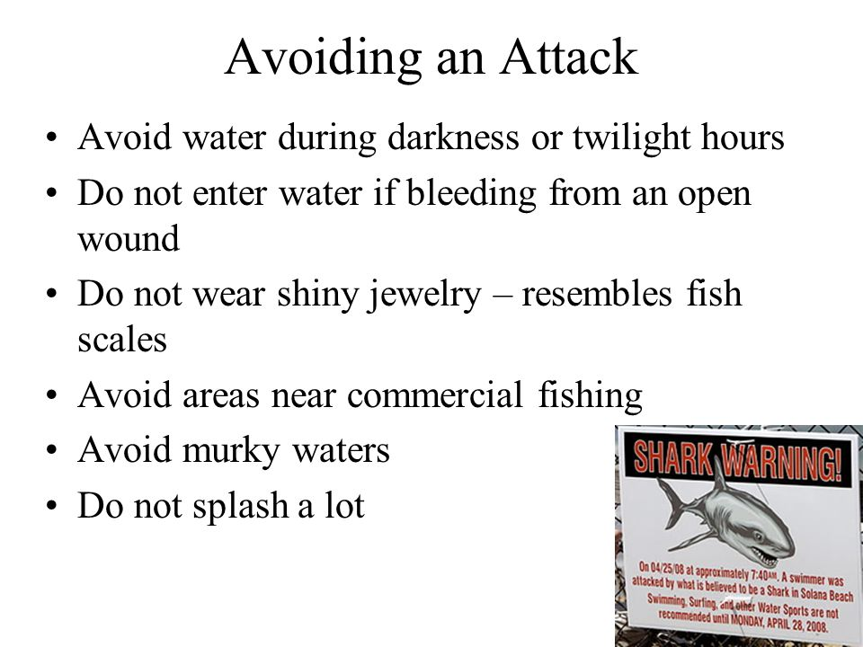 Avoiding an Attack Avoid water during darkness or twilight hours
