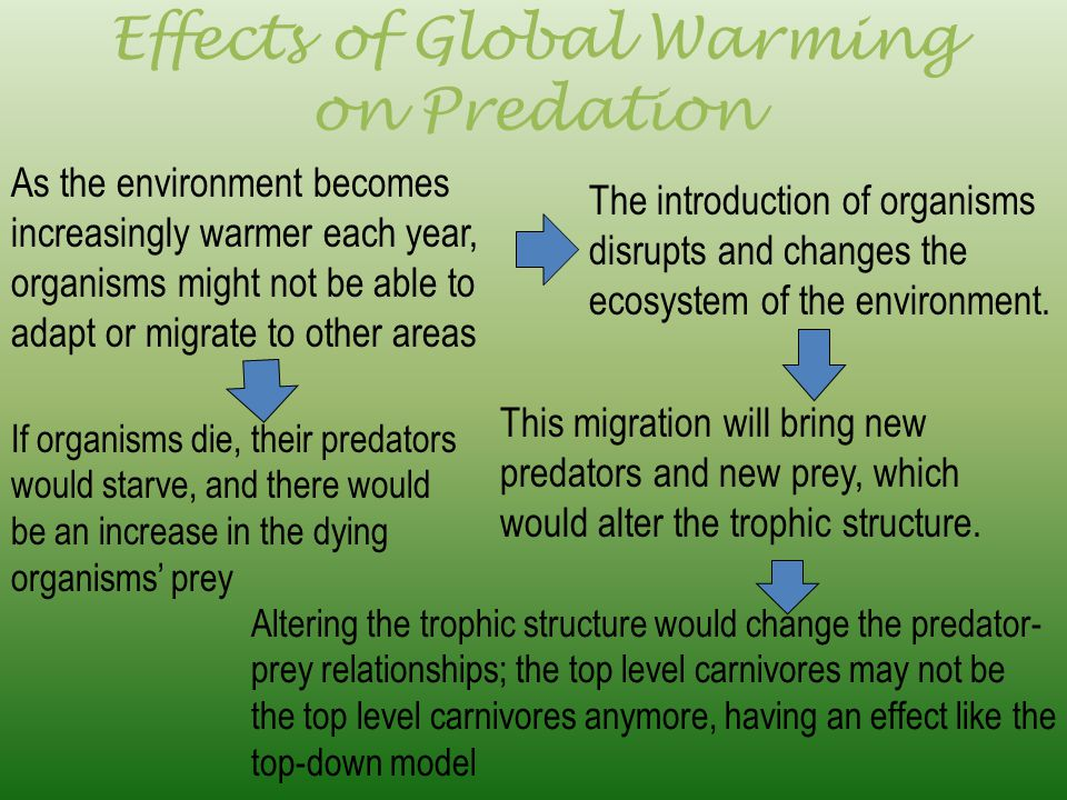 Effects of Global Warming on Predation