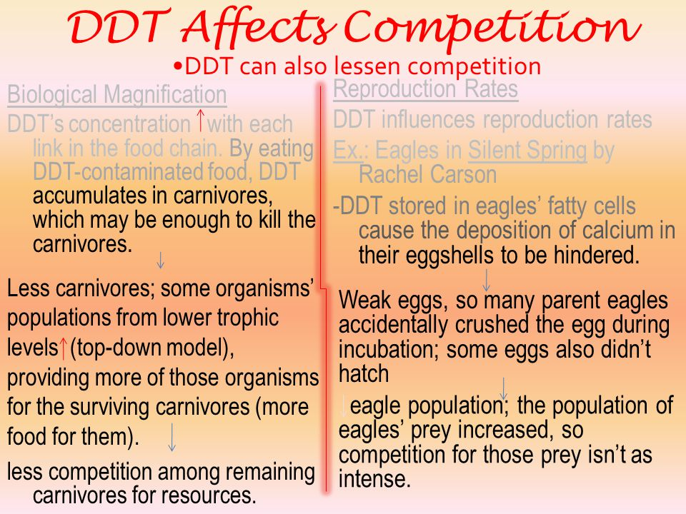 DDT can also lessen competition