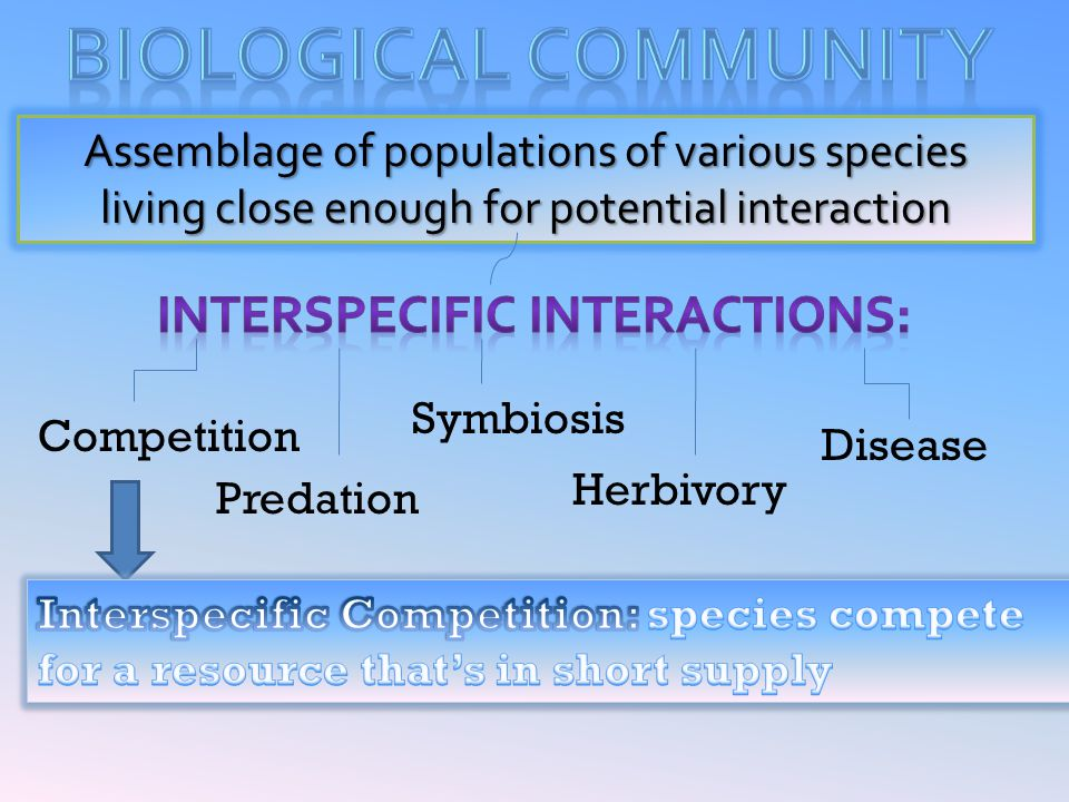 Interspecific interactions: