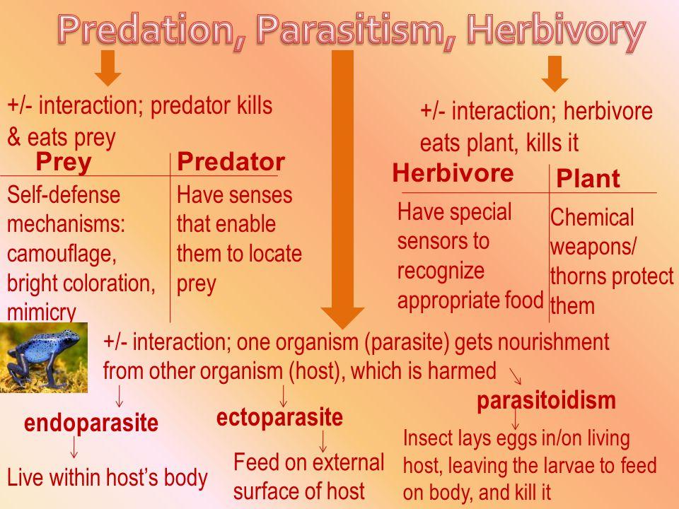 Predation, Parasitism, Herbivory