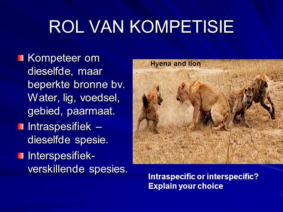 ROL VAN KOMPETISIE Kompeteer om dieselfde, maar beperkte bronne bv. Water, lig, voedsel, gebied, paarmaat.
