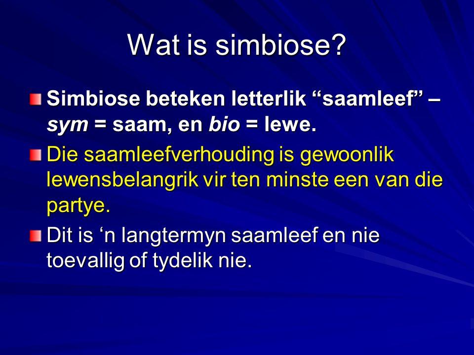 Wat is simbiose Simbiose beteken letterlik saamleef – sym = saam, en bio = lewe.