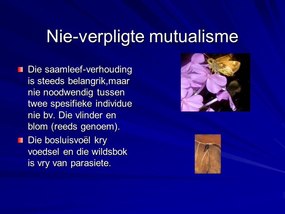 Nie-verpligte mutualisme